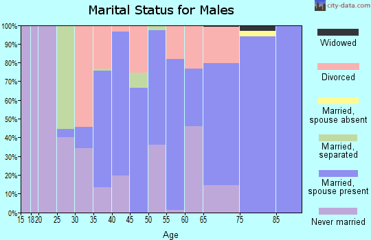 Zip code 42081 marital status for males