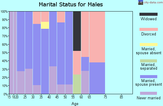 Zip code 42262 marital status for males