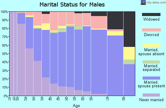 Zip code 42303 marital status for males