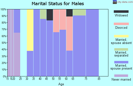 Zip code 42324 marital status for males