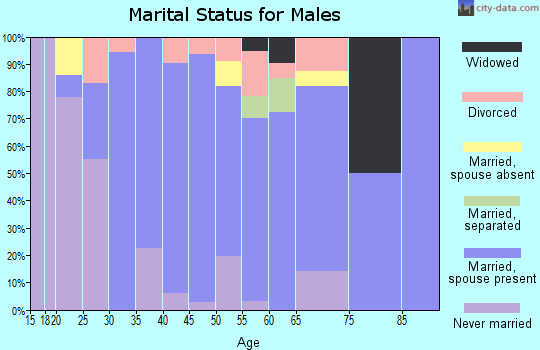 Zip code 42378 marital status for males