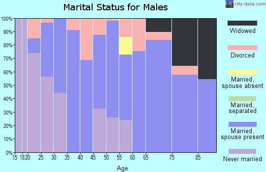 Zip code 42404 marital status for males