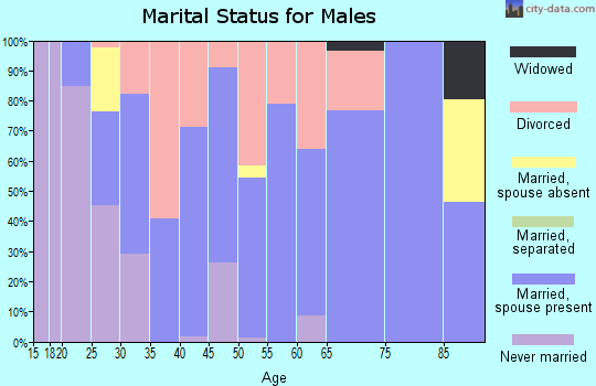 Zip code 42406 marital status for males