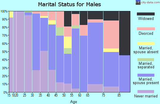 Zip code 42437 marital status for males