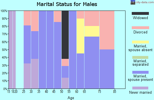 Zip code 42528 marital status for males