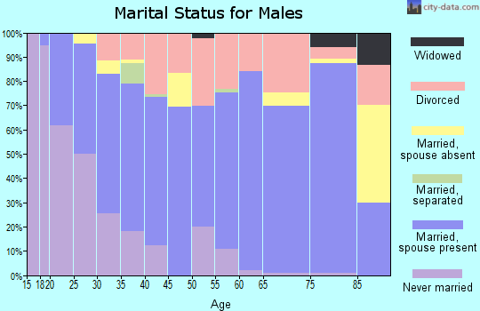 Zip code 42539 marital status for males