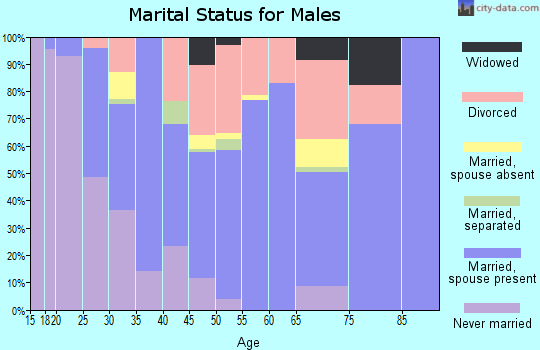 Zip code 42602 marital status for males