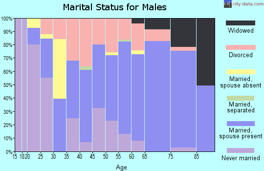 Zip code 42717 marital status for males