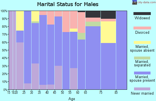 Zip code 42721 marital status for males