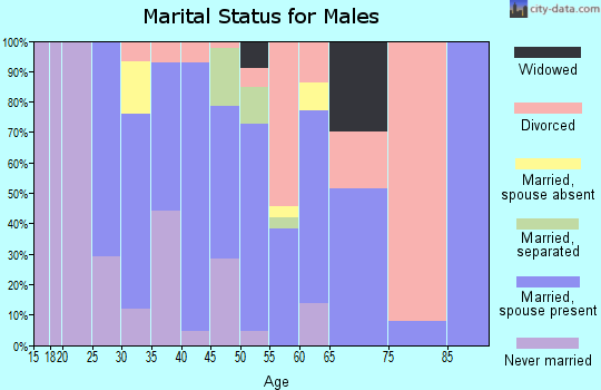 Zip code 43106 marital status for males