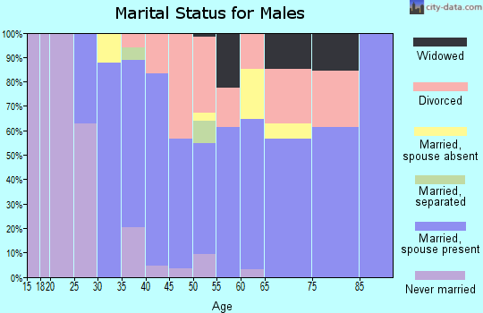 Zip code 43164 marital status for males