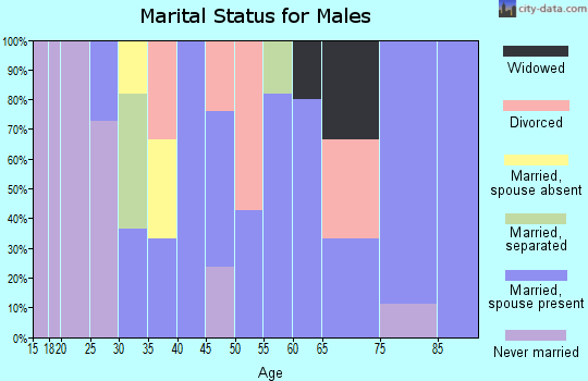 Zip code 43322 marital status for males