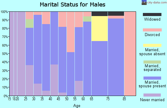 Zip code 43406 marital status for males