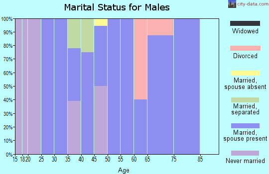 Zip code 43408 marital status for males