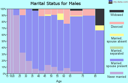 Zip code 43571 marital status for males