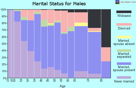 Zip code 43725 marital status for males