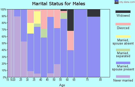 Zip code 43837 marital status for males