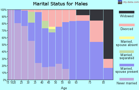 Zip code 43938 marital status for males