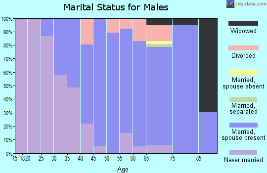 Zip code 44040 marital status for males