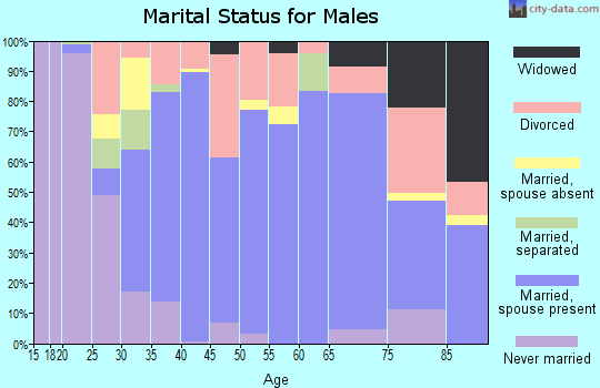 Zip code 44047 marital status for males