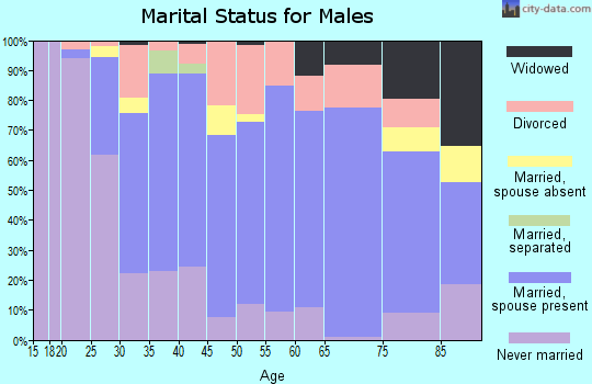 Zip code 44241 marital status for males