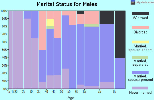 Zip code 44403 marital status for males