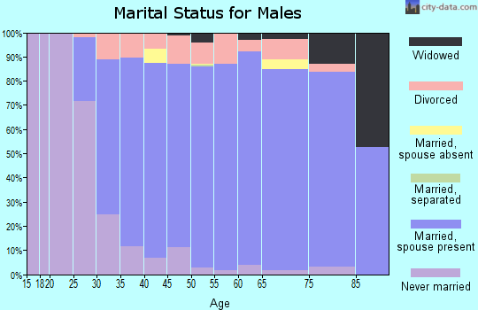 Zip code 44406 marital status for males