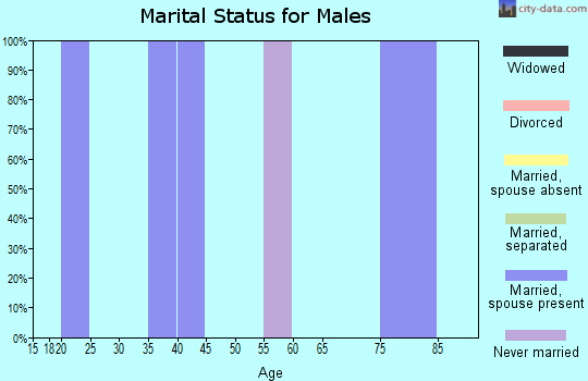 Zip code 44690 marital status for males