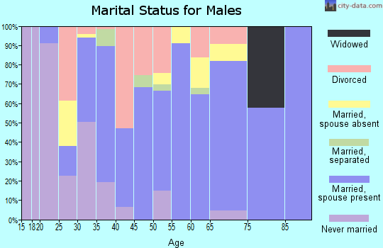 Zip code 45135 marital status for males