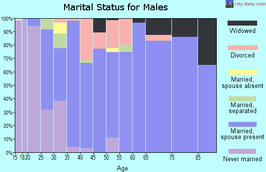 Zip code 45154 marital status for males