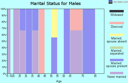 Zip code 45172 marital status for males
