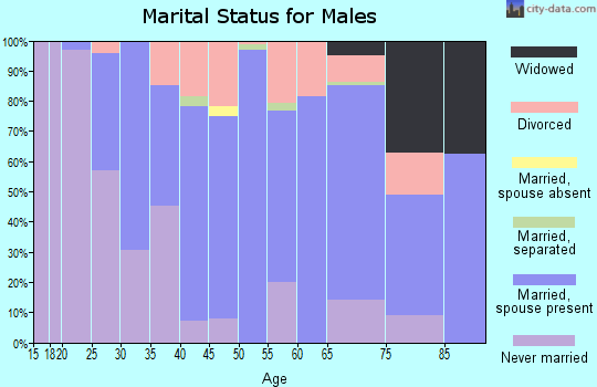 Zip code 45347 marital status for males