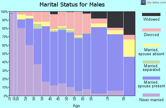 Zip code 45373 marital status for males