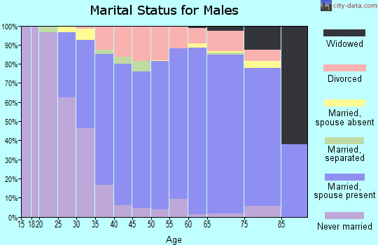 Zip code 45502 marital status for males