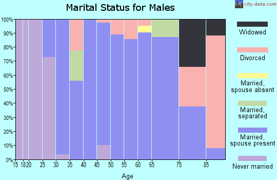 Zip code 45657 marital status for males