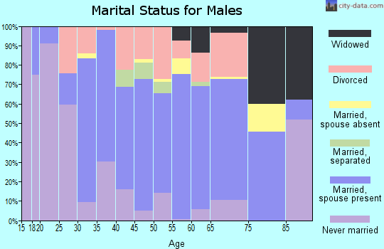 Zip code 45661 marital status for males