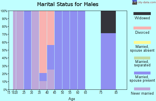Zip code 45671 marital status for males