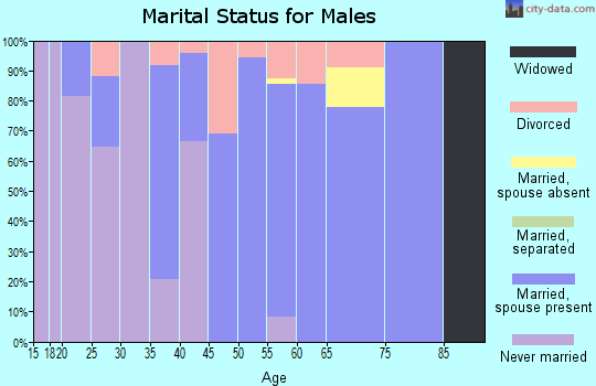 Zip code 45684 marital status for males