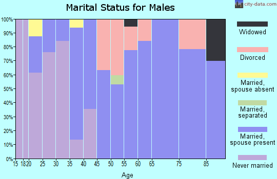 Zip code 45784 marital status for males