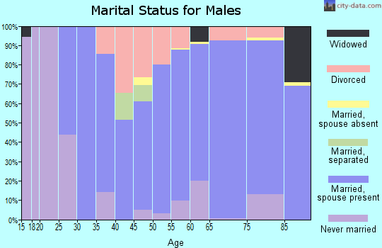 Zip code 45817 marital status for males