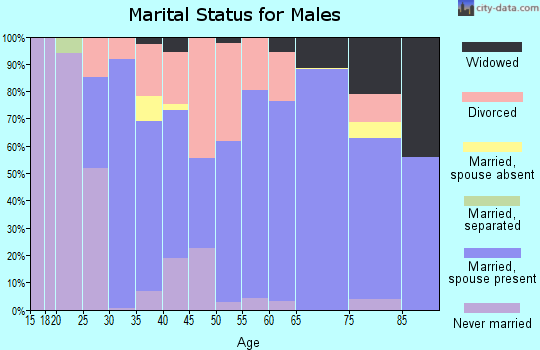 Zip code 46001 marital status for males