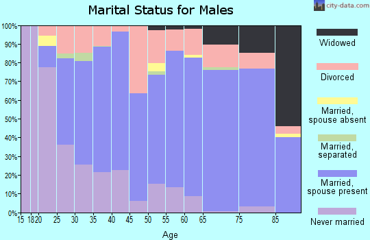 Zip code 46011 marital status for males
