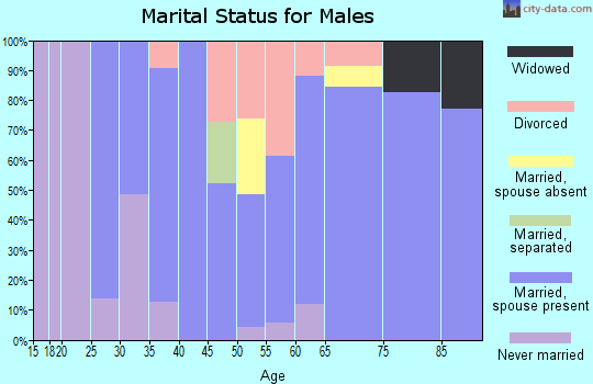 Zip code 46051 marital status for males