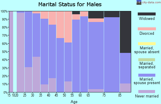 Zip code 46070 marital status for males