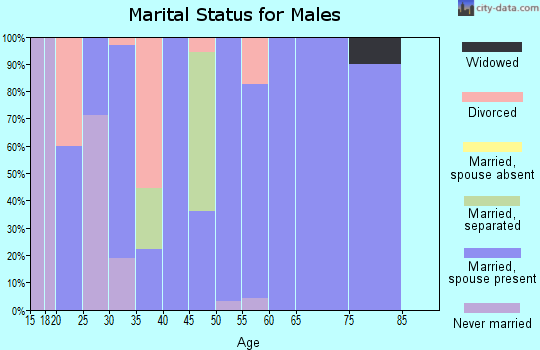 Zip code 46133 marital status for males