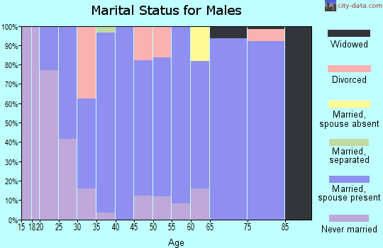 Zip code 46149 marital status for males