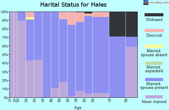 Zip code 46163 marital status for males