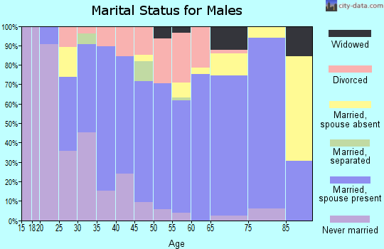 Zip code 46231 marital status for males