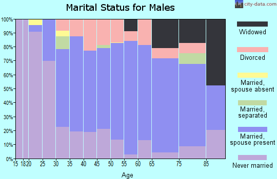 Zip code 46303 marital status for males