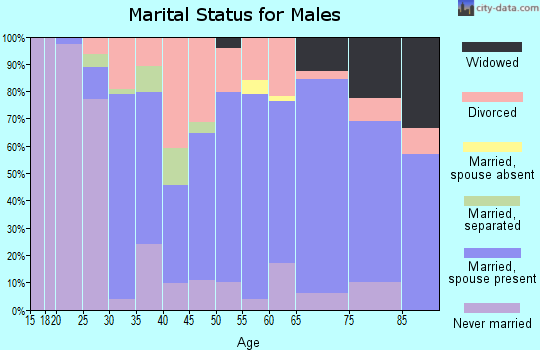 Zip code 46366 marital status for males